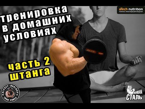 Тренировка в домашних условиях Часть 2 Штанга