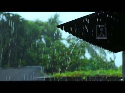 Cherrapunji rain : the wettest place on Earth