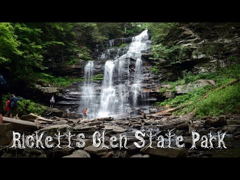 The Falls Trail of Ricketts Glen State Park, PA