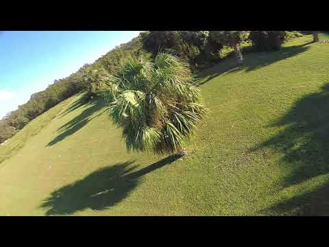 Wizard X220 emax 2205S 2300kv wraith32 Maiden flight