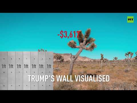 How much will Trump's wall cost? $11bn visualised!