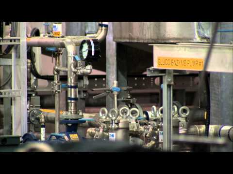 CELLULOSIC BIOMASS: Part 1 - Fueling the Future