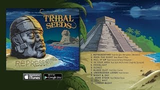 "Tribal Seeds - ""Herb Stock"" feat Mykal Rose (OFFICIAL)"
