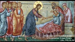 Как мы приходим к Богу. (Ев., Лк., VIII, 41-56, проп. от 21.11.2010г.)(Проповедь.