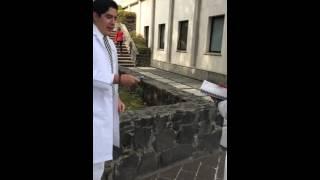 Bioseguridad Sifuentes Fernando 10354