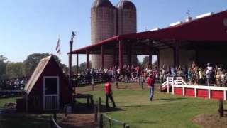 Pig Races at Southern Belle Farm