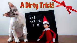 Elf on the Shelf Has Fun with 'Poop' | Original Music