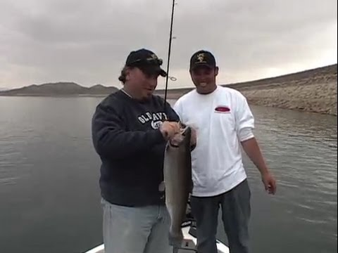 Time to fish diamond valley lake youtube for Diamond valley lake fishing report