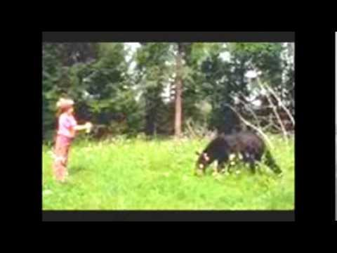 I met a bear by Twin Sisters mp3
