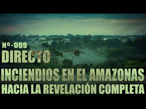 Sobre el incendio del Amazonas ¿Que puede estar pasando?