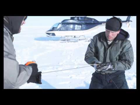 Polar Bear Research on the Chukchi Sea