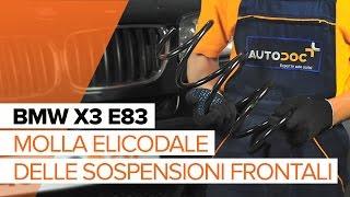 Videoanleitungen: Wie Regelsonde wechseln BMW X3 (E83)