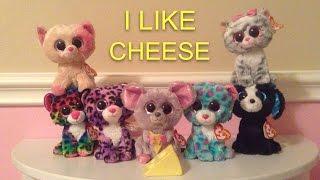 """""""I like cheese"""" Beanie Boo Music Video"""