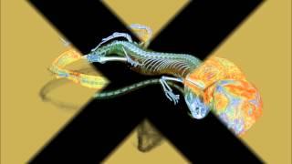 Micro-CT study of the large psammodrom lizard