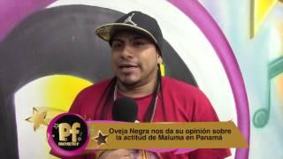 OVEJA NEGRA OPINA SOBRE EL COMPORTAMIENTO DE MALUMA EN PANAMA