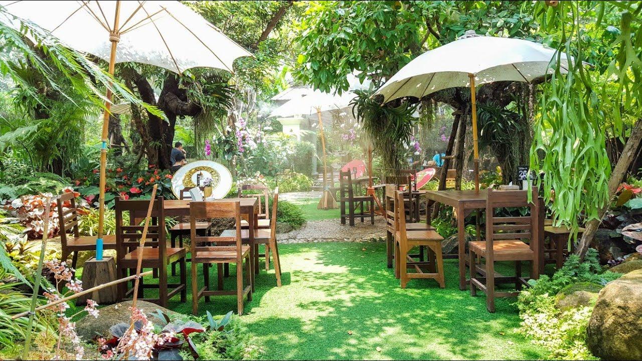 ร้านไม้เฮือน 60 ( กาแฟดอยช้าง แม่ริม) ที่สุดแห่งร้านกาแฟ