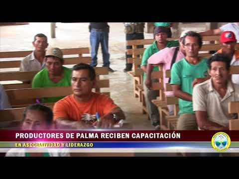 PRODUCTORES DE PALMA RECIBEN CAPACITACIÓN EN ASOCIATIVIDAD Y LIDERAZGO