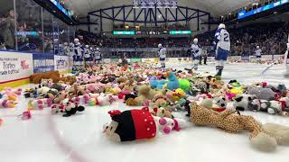 Syracuse Crunch 'Teddy Bear Toss' benefit fills ice with stuffed animals
