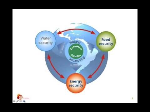CDKN  Webinar:  The water, energy and food nexus in Amazonia and Indonesia