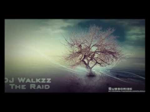 Alan Walker The Raid