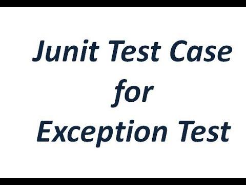Junit Tutorial - Junit test case for Exception test