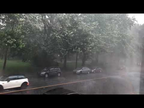 Montreal Microburst - Strong winds