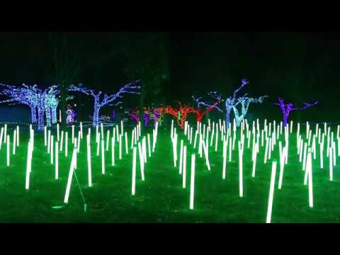 Detroit Zoo Christmas Lights.Detroit Zoo Wild Lights 2017