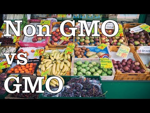 GMO vs Organic or NON GMO - SEE LINK IN DESCRIPTION FOR NEW VIDEO