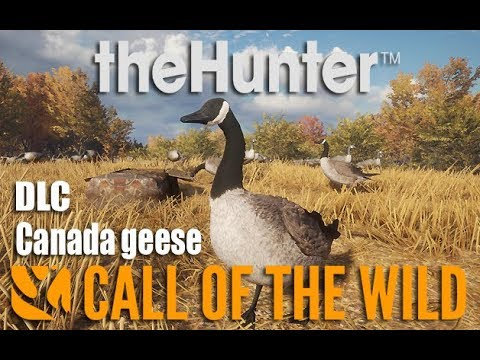 The Hunter Call Of The Wild | CANADA GOOSE + DLC / GUIDE