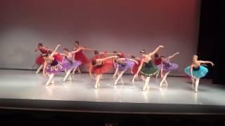 Ballet Arts of Austin Spring Recital 2017 - Bows Dress 2