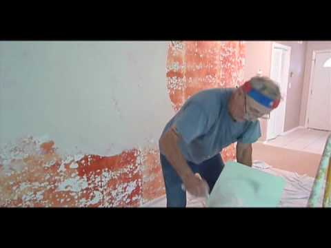 Skim coating a plaster wall like a pro