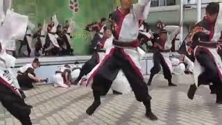 16年9月17日、こいや祭り千里中央セルシー会場にて、今年度演舞『...