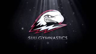 2017 Gymnastics MRGC Video