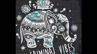 Criminal Vibes - Trumpet Game (Original Mix)