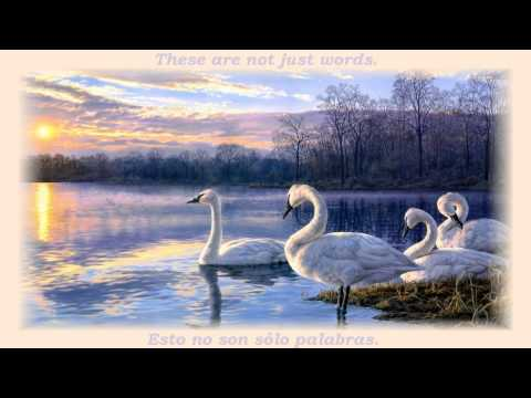 Lake of Joy - Quotes by Prem Rawat & Music by Nitish Kulkarni