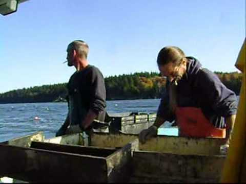 Lobster boat fishing harrington maine 2010 youtube for Lobster fishing in maine