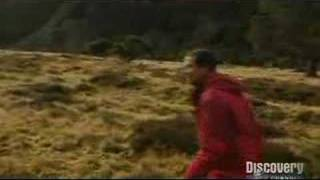 Man vs. Wild: Bear Grylls Kills and Eats a Rabbit