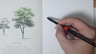 감성 가득한 라이브 드로잉 - 오늘도 나무를 그리다