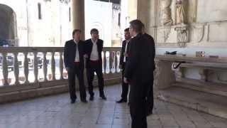 Dalmatuan a cappella ダルメシアン アカペラ