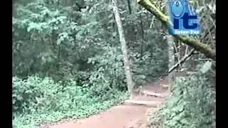 Parque Ecológico Senderos  De Alux