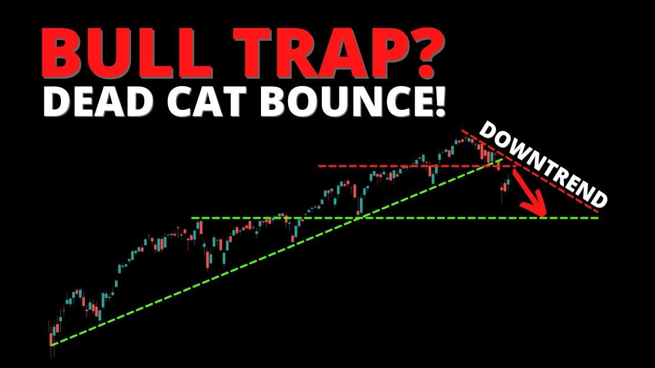 BULL TRAP? Dead Cat Bounce! (SPY, QQQ, DIA, IWM, ARKK, BTC)