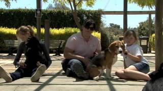 Georgia & Cecile On World's Dog Trainer (part 2 Of 2)