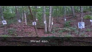 Un Explorador Entro a Este Bosque y Encontro algo Escalofriante (GRABACION REAL) thumbnail