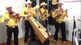Conjunto de Arpa Grande (Tu Delirio) Jilgueros Michoacános 2012
