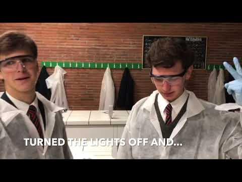Viaro 1A: Detecting Blood
