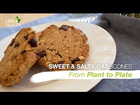 Sweet and Salty Oat Scones