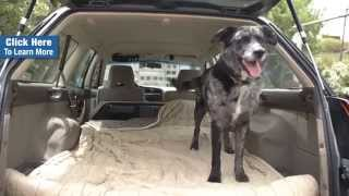 Why A Rescue Dog Trainer Loves Her Nate Wade Subaru