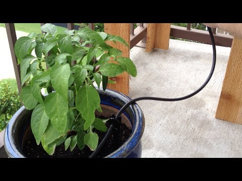 Diy gravity fed drip irrigation system youtube - Diy drip irrigation systems ...