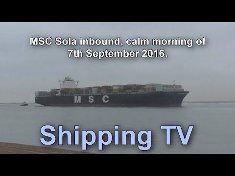 11,660 TEU MSC Sola inbound at Felixstowe, 7 September 2016
