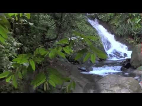 Guadeloupe 2011 Chapitre 3